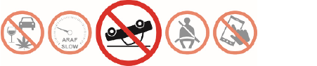 Fatal 5 Icons with reckless driving icon highlighted
