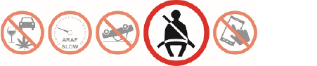 Fatal 5 Icons with Seatbelt icon highlighted